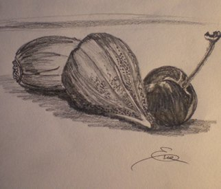 Still Life Pencil Drawing by Eve Co Title: Figs and Cherry, created in 2009
