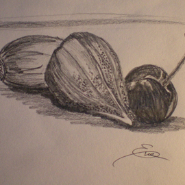 Eve Co Artwork Figs and Cherry, 2009 Pencil Drawing, Still Life