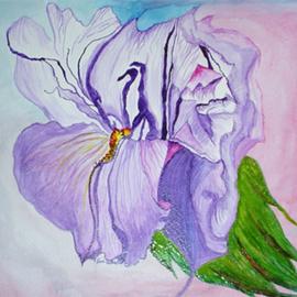 Lilyorchid
