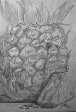 Still Life Pencil Drawing by Eve Co Title: Pineapple, created in 2009