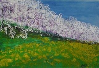 Eve Co: 'Spring in Washington State', 2000 Other Painting, Landscape. Spring in Washington StateStrathmore PaperWindsor  Newton WatercolorsAcrylics LiquitexMay 23, 2003Blossoming trees in spring in Washington state.  I drove for miles and saw the trees and hopped a fence and went and sat in the grass and painted what I saw...