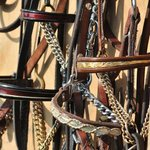 Bits And Bridles, Laura Imhoff