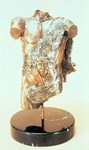 Bronze Sculpture by Ione Citrin titled: Torso , created in 2008