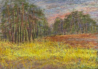 Irina Maiboroda: 'Pine Forest', 2012 Pastel, Landscape. Artist Description:  landscape, abstract, imaginary, impression, colorful, forest, pine, plein airThe work is shipped with a passe- partout 40x30 cm           ...