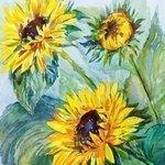 Sunflowers By Irina Maiboroda