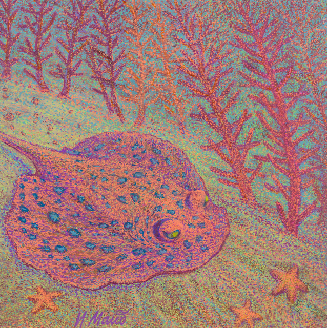 Irina Maiboroda pink ray in coral forest 2017