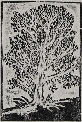 Tamara Sorkin: 'young olive tree', 2007 Woodcut, Trees.  This is a young olive tree from my olive grove, that was used as a logo for my olive oil press ...