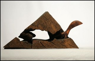 Ivica Vukadin: 'lizard', 2005 Wood Sculpture, Animals.