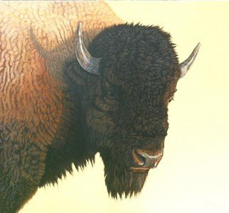 Animals Acrylic Painting by Jacquie Vaux Title: Big Buffalo, created in 2008