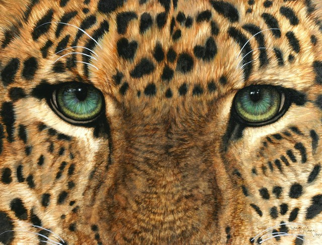 Jacquie Vaux Artwork Eyes Of Leopard Original Painting