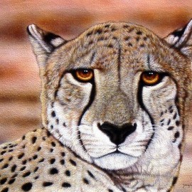 Jacquie Vaux Artwork Portrait of a Cheetah, 2011 Giclee, Animals
