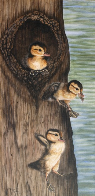 Jacquie Vaux  'Wood Ducks Leaving The Nest', created in 2013, Original Painting Acrylic.