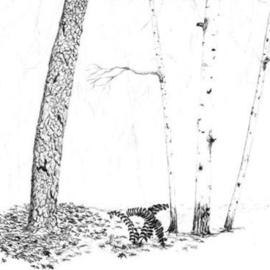 Birches and Tree Trunk By James Parker
