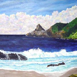 James Parker Artwork Mazunte Beach, 2003 Acrylic Painting, Seascape