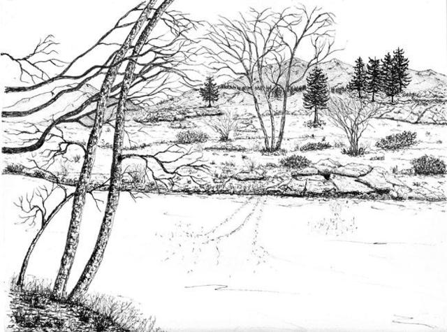 James Parker  'Stream And Trees', created in 2002, Original Drawing Pen.
