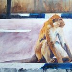 Borneo Monkey I By Jane Spence