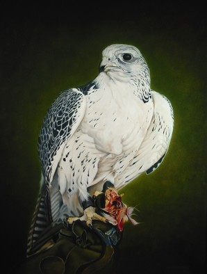 Birds Oil Painting by Jan Teunissen Title: Gyrfalcon with prey  , created in 2011
