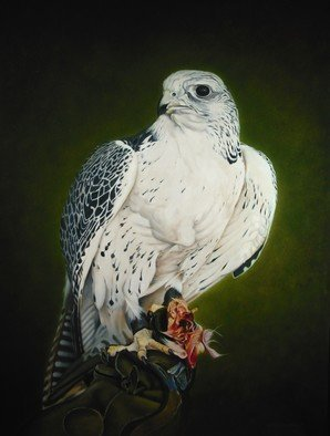 Jan Teunissen: 'Gyrfalcon with prey  ', 2011 Oil Painting, Birds. Oilpainting on boardGyrfalcon with prey...