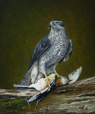 Birds Oil Painting by Jan Teunissen Title: Hawk male with jay, created in 2008
