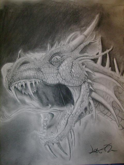 James Newton  'Dragon', created in 2008, Original Drawing Charcoal.