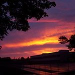 Sw Detroit Sunset, Jeanette Locher