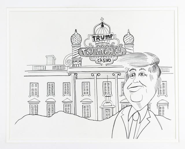 jeff turner taj mahal whitehouse drawing pen artwork political