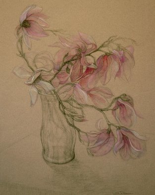 Judith Fritchman: 'Magnolia Magic', 2007 Pastel, Floral.  Pink and white Magnolia blossoms in pastel and conte pencil on tan paper. ...