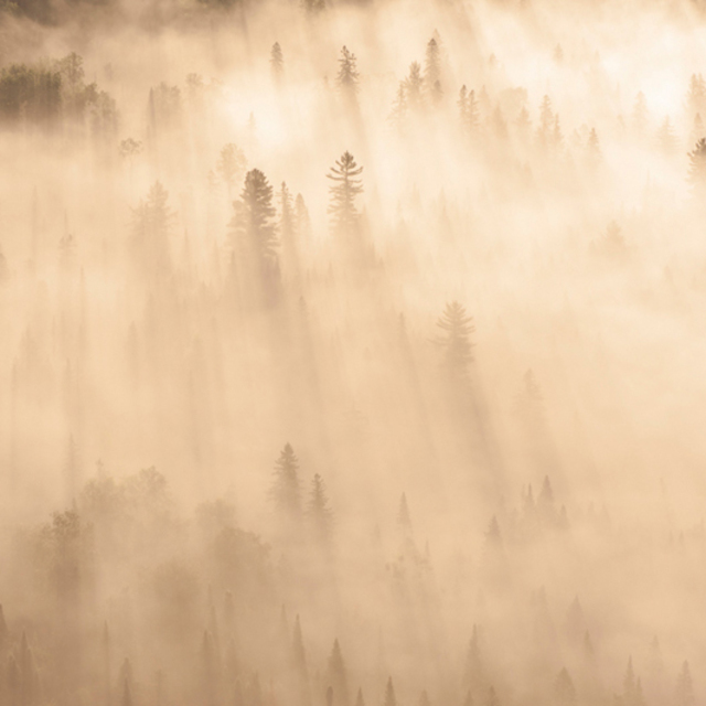 John Griebsch  'Sunrise Fog 227', created in 2012, Original Photography Color.