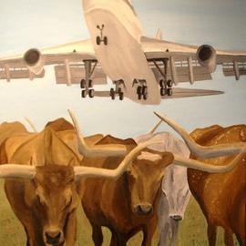 Herding Longhorns