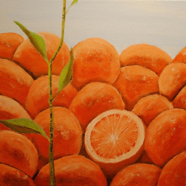 Jim Lively  'Not A Citrus', created in 2011, Original Photography Color.