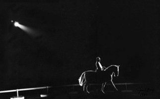 Jim Wright: 'Show horse', 1981 Black and White Photograph, Animals.