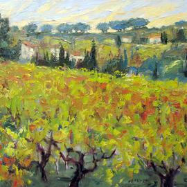 Amongst Vines