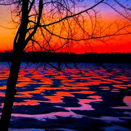 Mark Goodhew Artwork Winter Lake Sunrise, 2015 Color Photograph, Floral