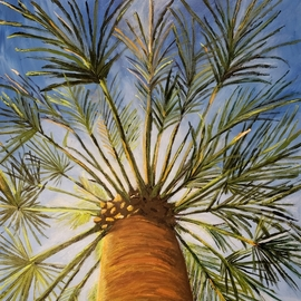 Jo Allebach: 'palm tree', 2018 Acrylic Painting, Trees. Artist Description: Palm Tree, Blue Sky, Unique view, View from underneath palm tree, Looking up at palm tree...