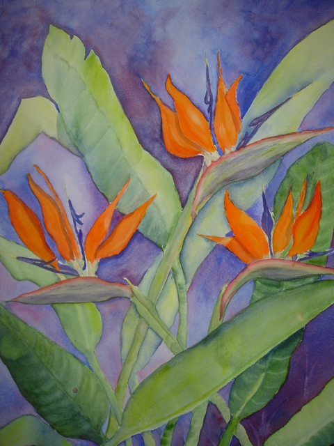 Joanna Batherson  'Bird Of Paradise', created in 2007, Original Watercolor.