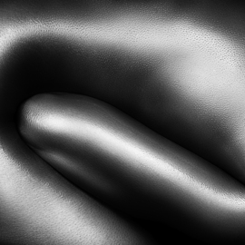 Johan Swanepoel: 'female nude silver oil 3', 2019 Black and White Photograph, Nudes. Artist Description: Nude abstract and figurative bodyscape of a naked woman covered with thick silver oil in a curled fetus position. Sensual fine art close- up photography of the female upper body with shiny reflections on the bare skin...
