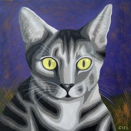 Grey Tabby