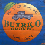 butrico groves mims florida By John Cielukowski