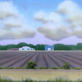farm mims florida By John Cielukowski