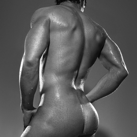 Male Nude Back By John Falocco