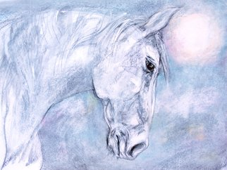 John Sharp: 'dawn horse', 2017 Other Painting, Animals. Artist Description: Horse, Dawn, Charcoal, Acrylic, chalk on paper...