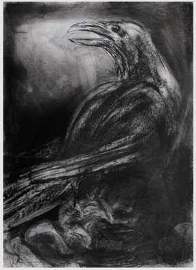 John Sharp: 'raven longsleddale', 2017 Charcoal Drawing, Birds. Artist Description: Raven...