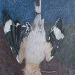 hoopoe nature morte By John Sims