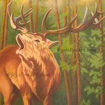 Elk In The Forest, Joanne Witalec