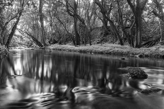 Jon Glaser: 'Downstream', 2010 Black and White Photograph, Landscape. Artist Description:  This black and white image shows the less traveled pathway thru a stream and under the cover of trees. The reflective surface of the water created a dramatic and calming effect on the photograph. black, black and white, dark, downstream, kauai, plants, reflection, ripples, river, stream, tree, trees, ...