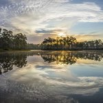 Everglades Ovation By Jon Glaser