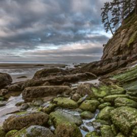 Green Stone Shore