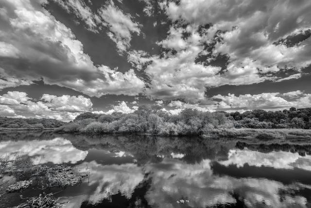 Jon glaser artwork myakka dream original photography black and white landscape art