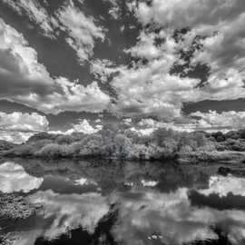 Jon Glaser: 'Myakka Dream', 2015 Black and White Photograph, Landscape. Artist Description:  Myakka State Park is located in Sarasota, Florida. This particular area, located near the park entrance, was extremely quite. The water was like a glass mirror.This limited- edition photograph, measuring approximately 40