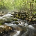 S Curve in the Smokies By Jon Glaser